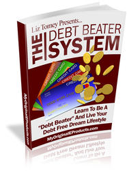 The Debt Beater System
